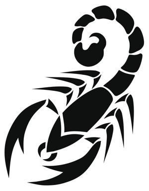 majestic tribal scorpion tattoos that will make heads turn rh pinterest com Celtic Scorpion Tattoo Designs scorpion tribal tattoo design