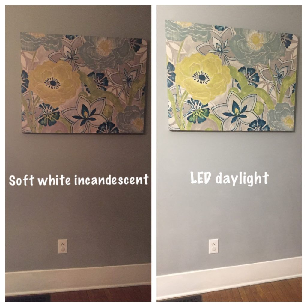 Soft White Incandescent Vs Led Daylight Bulb Daylight