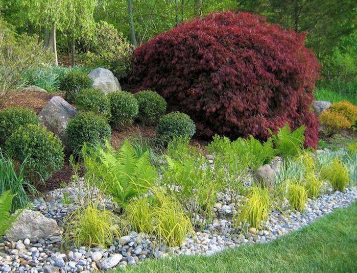 Rain Garden Design Landscaping Front Yards_39