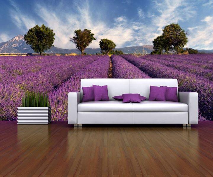 Fototapete wintergarten ~ Wintergarten einrichtung shabby chic möbel sitzbereich interior