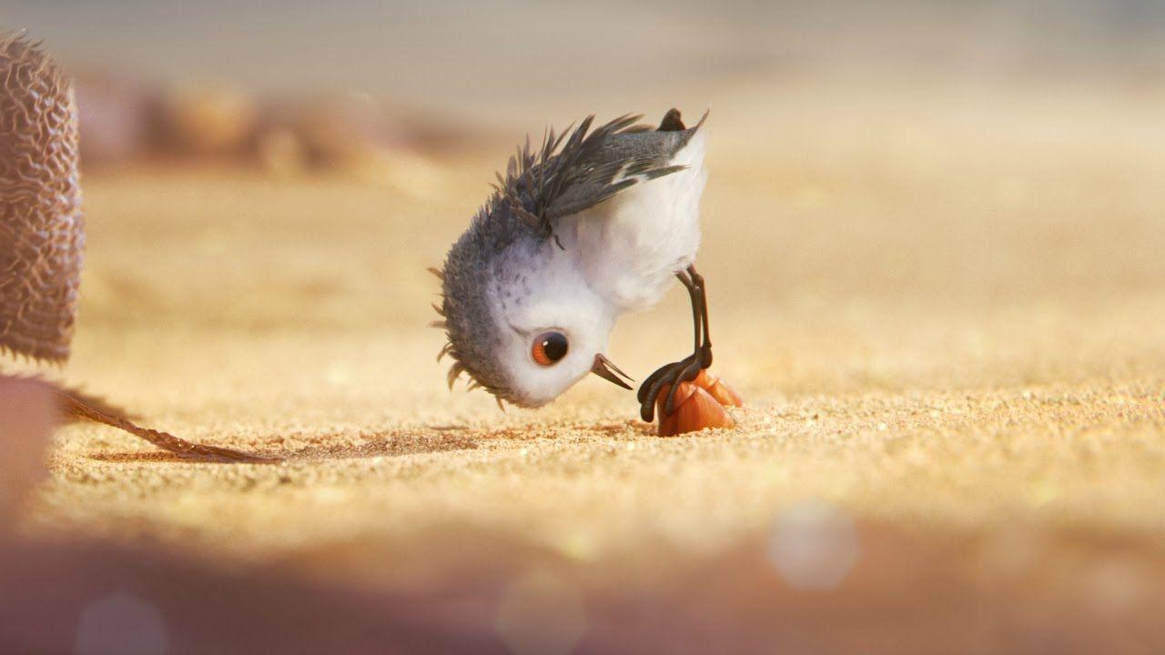 Piper Disney Pixar That Was So Cute Bird Thanks For