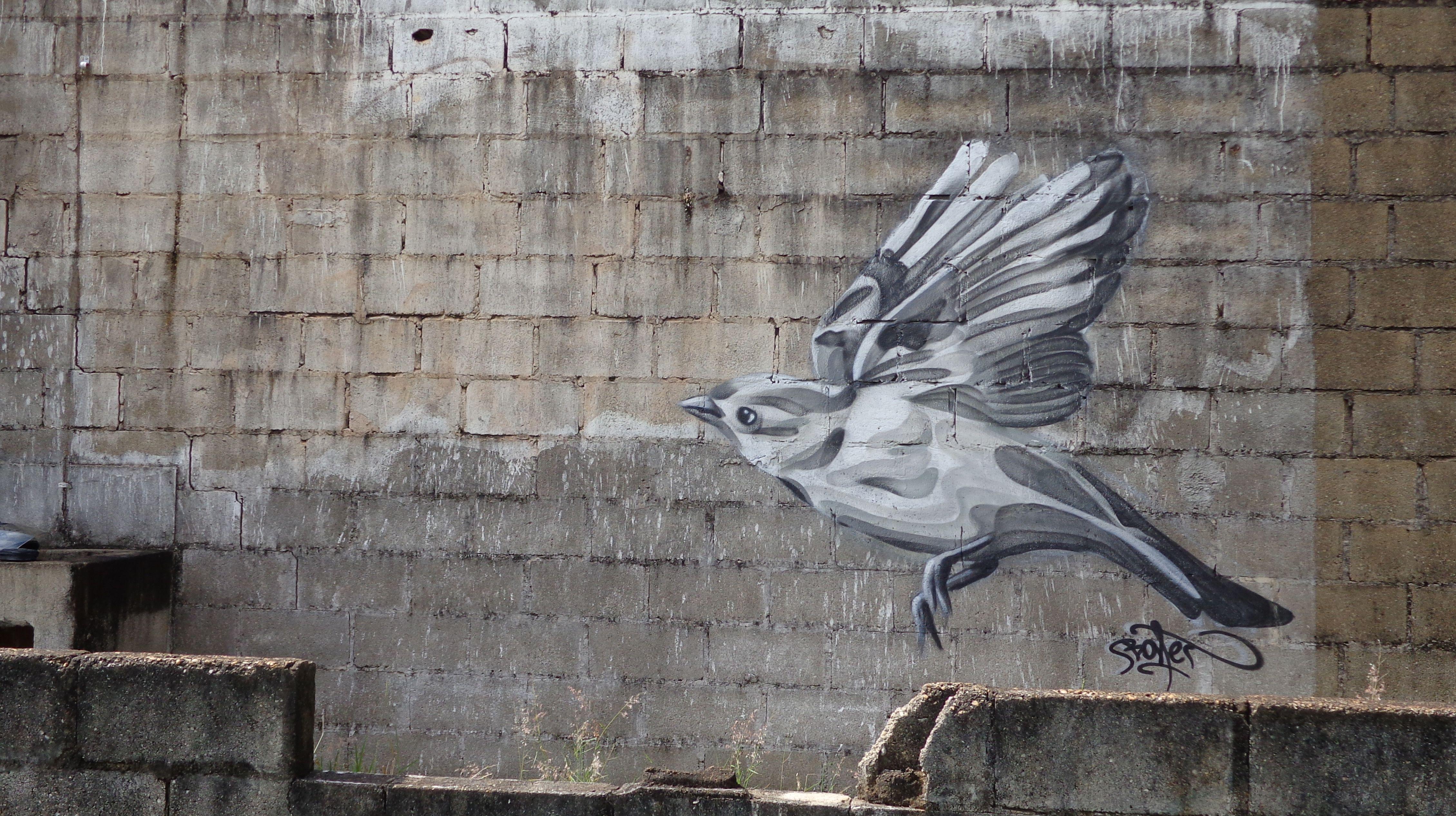 Flight bird Graffiti Streetart Bonet