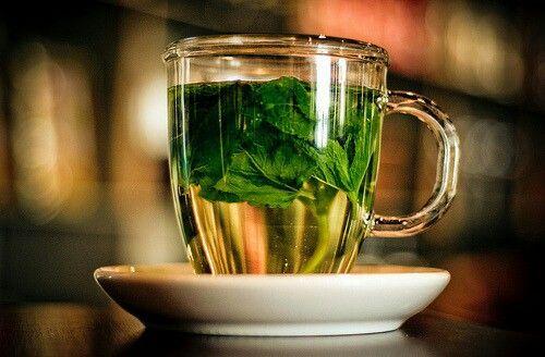 شاي بالنعناع Tea Mint Tea Green Tea