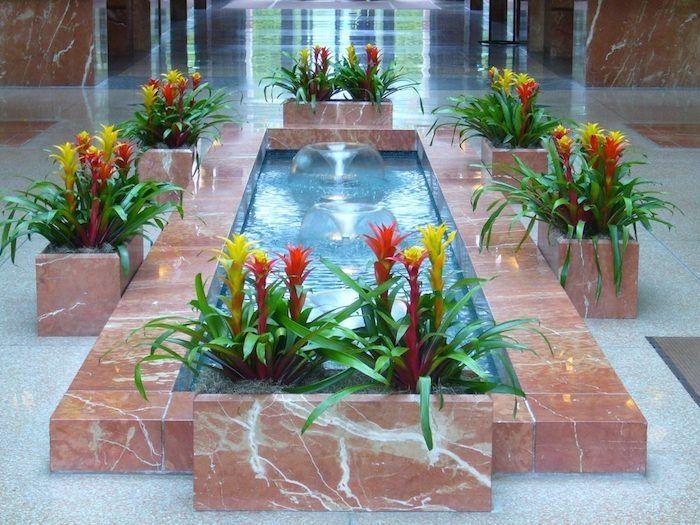 Pflanzen für dunkle Ecken gelbe und rote Blüten um einem inneren ...