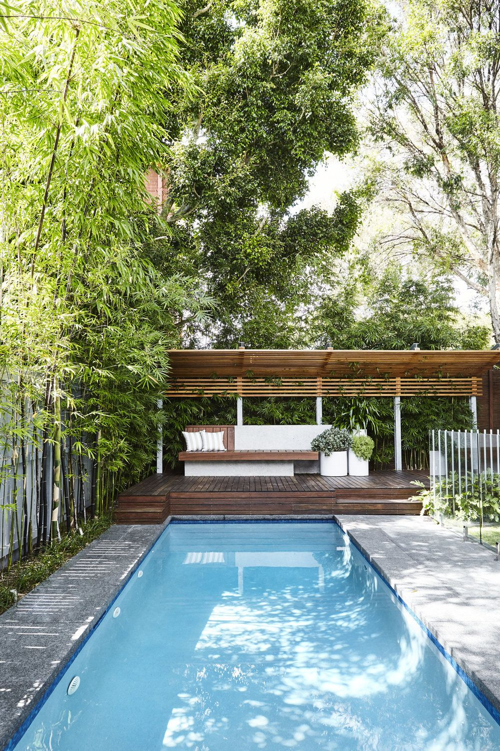 Pool + Garden Design. Randwick, Sydney - Outdoor Establishments | Backyard Pool Landscaping, Swimming Pools Backyard, Backyard Pool