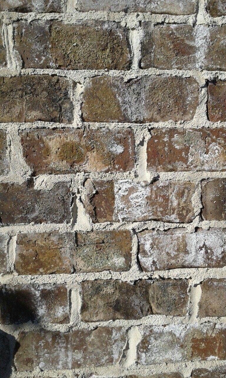 Cherokee Old Savannah Tumbled Brick With White Mortar Brick Exterior House Exterior Brick House Exterior