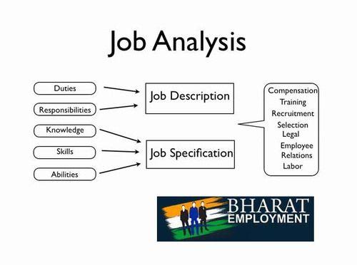Bharat Employment  Job Analysis