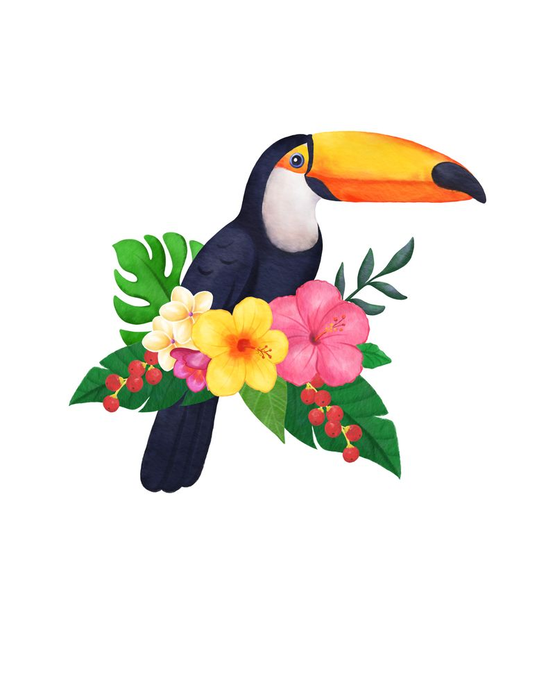 Tropical Toucan Floral Watercolor Art Print By Martha Zschock X Small Watercolor Art Prints Toucan Art Flower Drawing Images