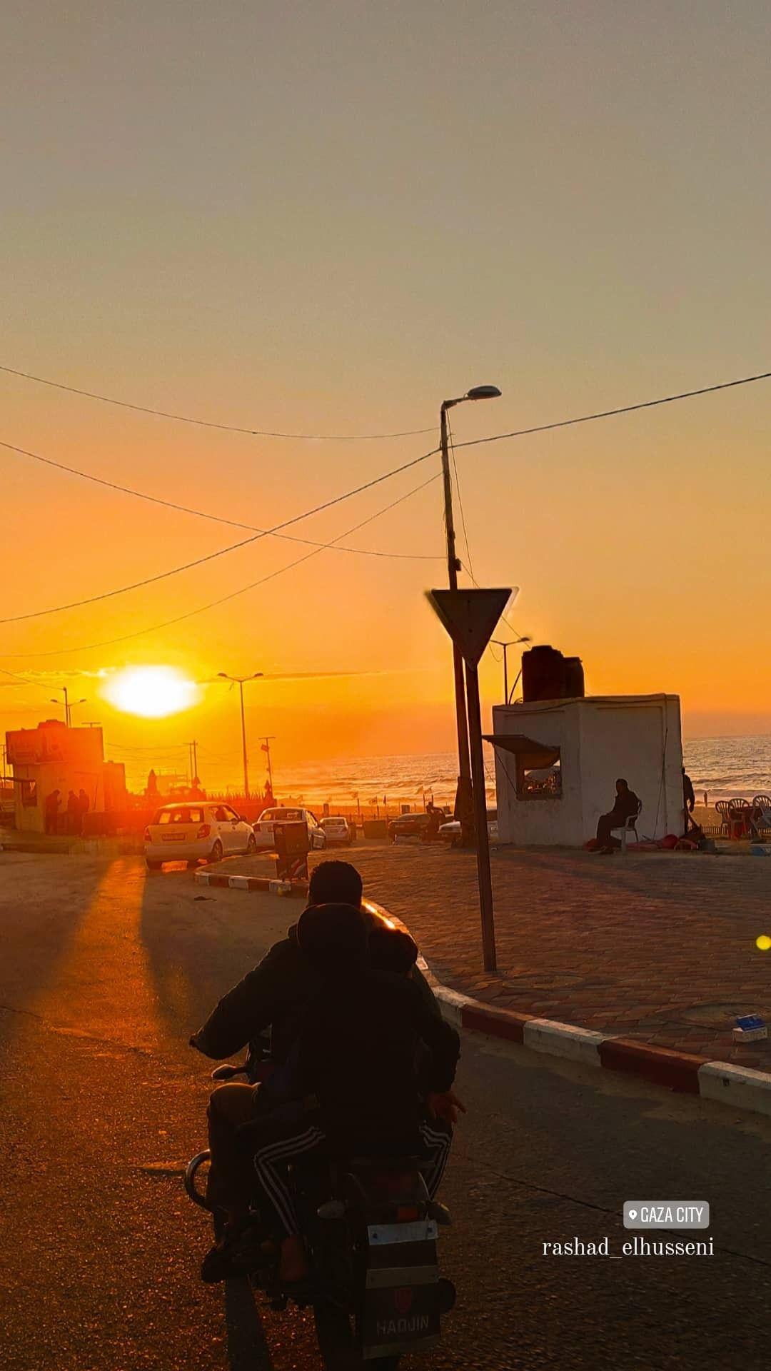 ورد أصفر طبيعة شجر اصفر غزة طبيعة جميل فلسطين القدس كلام تصوير صور ابيض صباح خير صل In 2021 Outdoor Sea Celestial