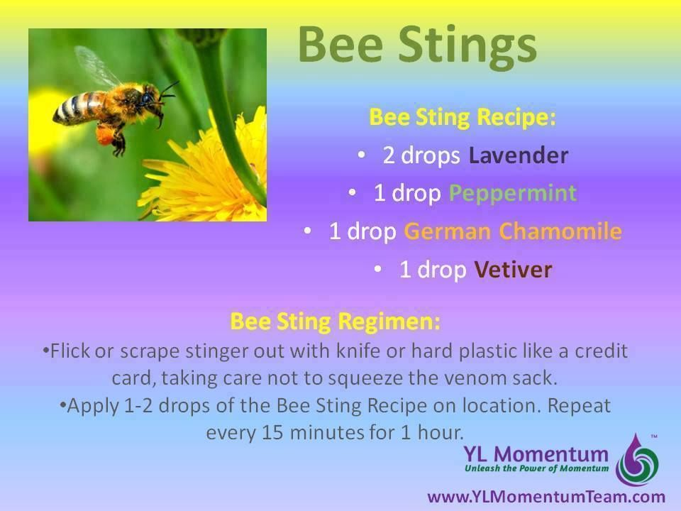 Young Living Essential Oils: Bee Sting