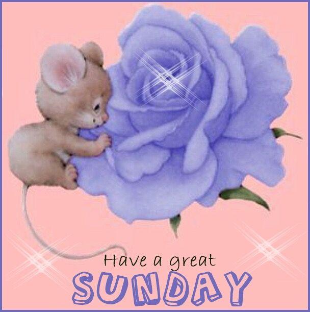 Resultado de imagem para a great sunday + blue roses