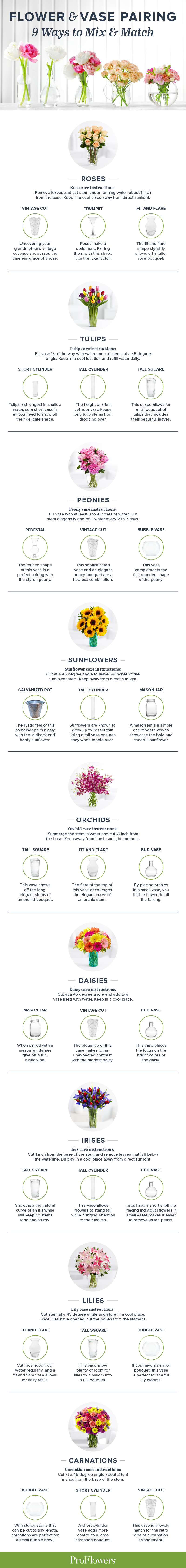 How to pair flower vases 9 ways to mix match proflowers how to pair flower vases 9 ways to mix match proflowers reviewsmspy