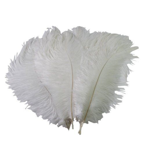 Wowlife Beautiful Home Decor Natural Ostrich Feathers Inch / Cm Long  Wedding Party Decorations.   Of The Month Deal
