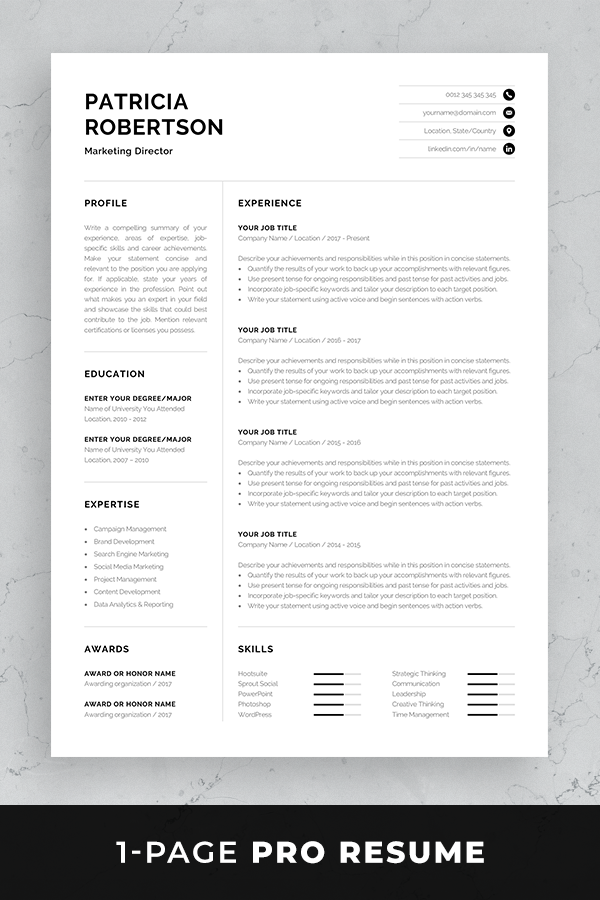Sample for Writing an Accounting Resume