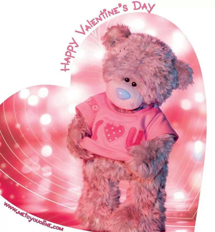 cute valentines day teddy bears