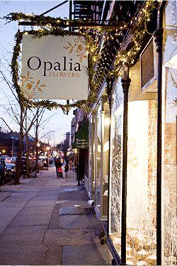 Opalia Store Front