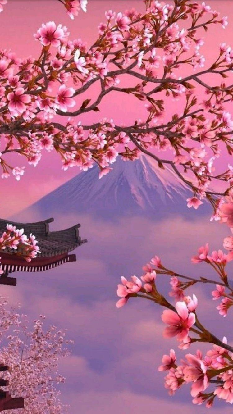Pin By Cecee G On A Cada Dia Aprender Cherry Blossom Wallpaper Cherry Blossom Japan Scenery Wallpaper