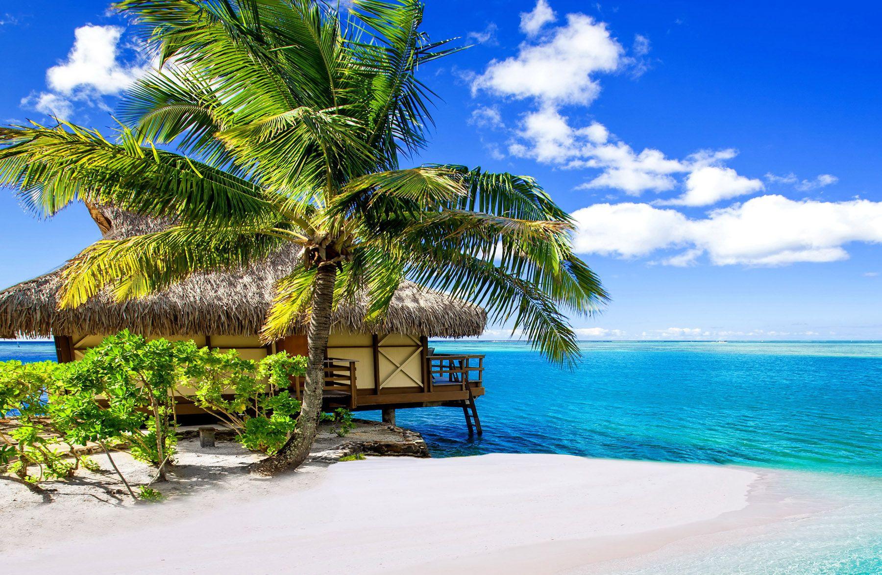Bora Bora Island Tahiti French Polynesia Tourist Attractions ชายหาด