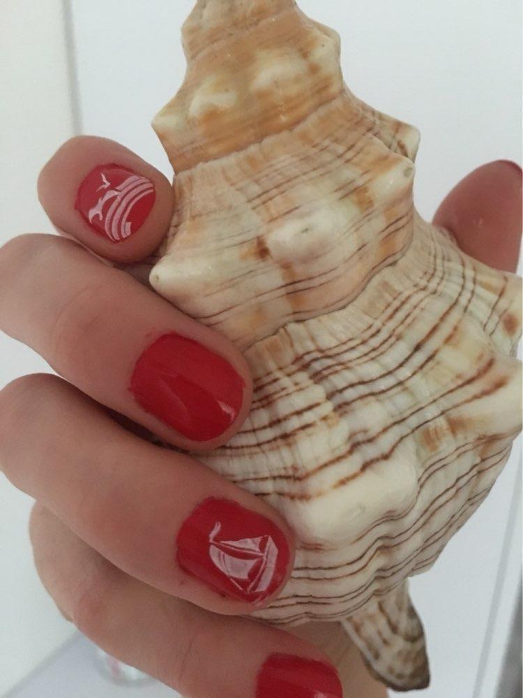 31 Colors Nail Art Designs Stamping Plate Nail Template