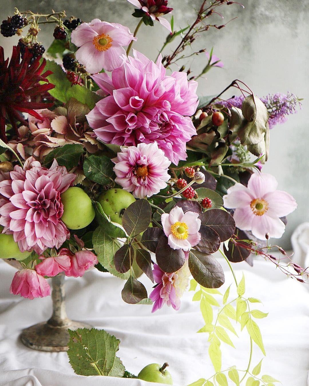Instagram plantes pinterest
