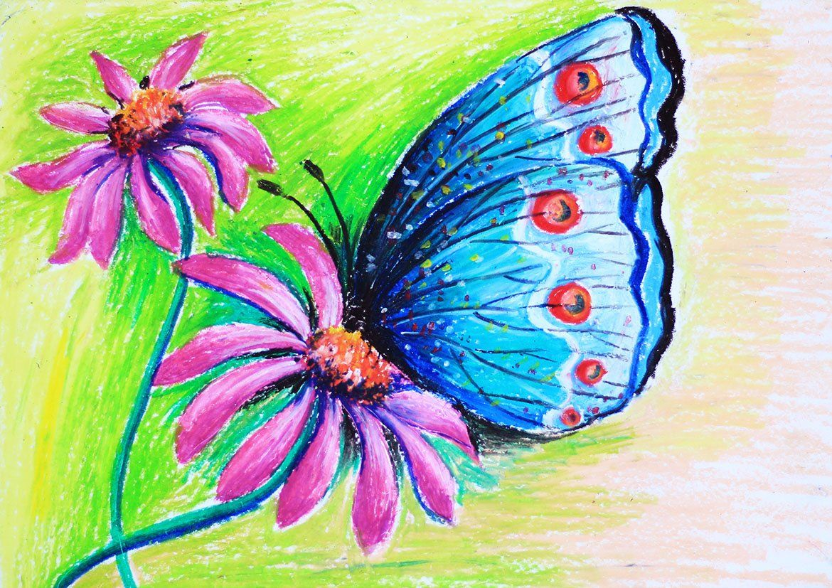 Butterfly And Flower With Oil Pastel So Beautiful