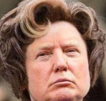 Donald Trump Dolores Umbridge