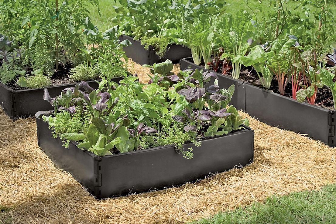 Grow Bed 3 x 3  Gardeners Supply Companybed