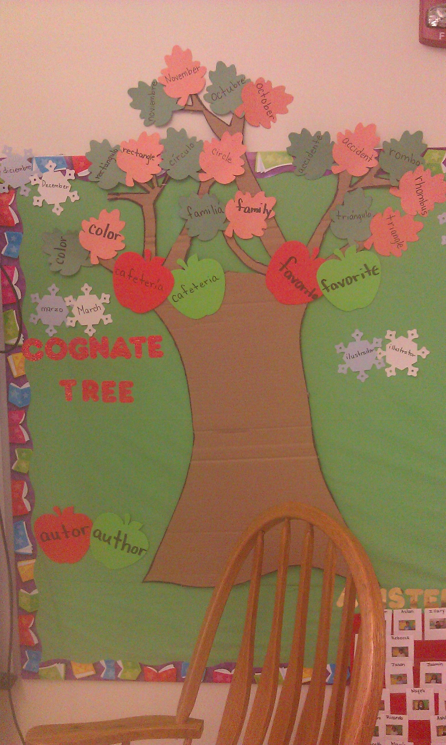 Spanish English Cognate Tree In A Bilingual Kindergarten