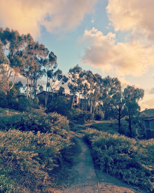 Perspectives Landscape Photogra Icarlton Ello Landscape Landscape Photography Photography