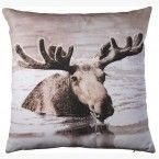 Cushion Moose