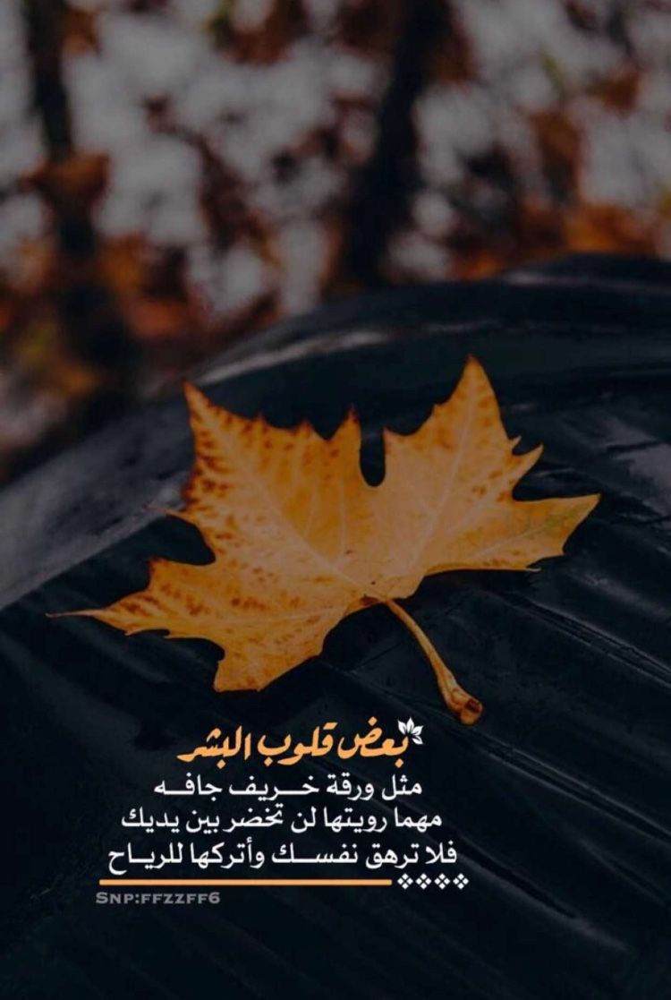 Pin By Dolpary On عبارات Picture Quotes Snapchat Quotes Love Words