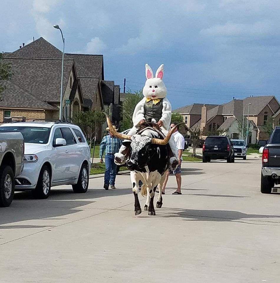 Celebrating Easter in Texas! easter