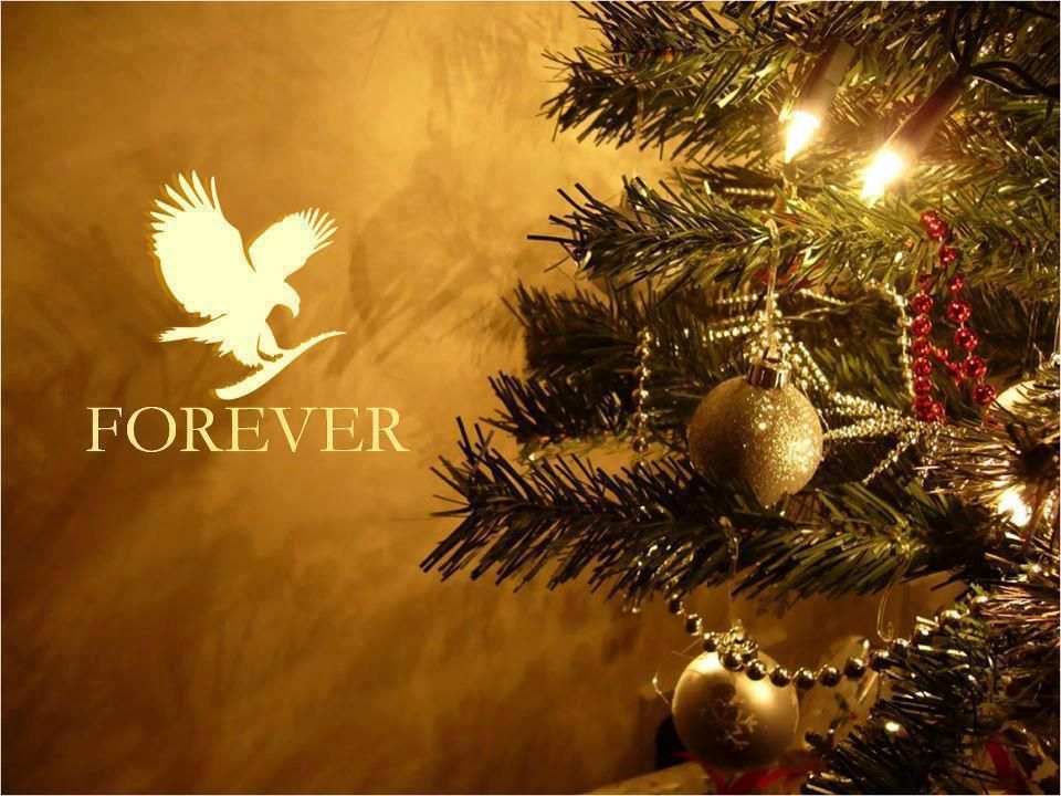 Pin by Amy Todd on Forever Living Pinterest Christmas, Christmas