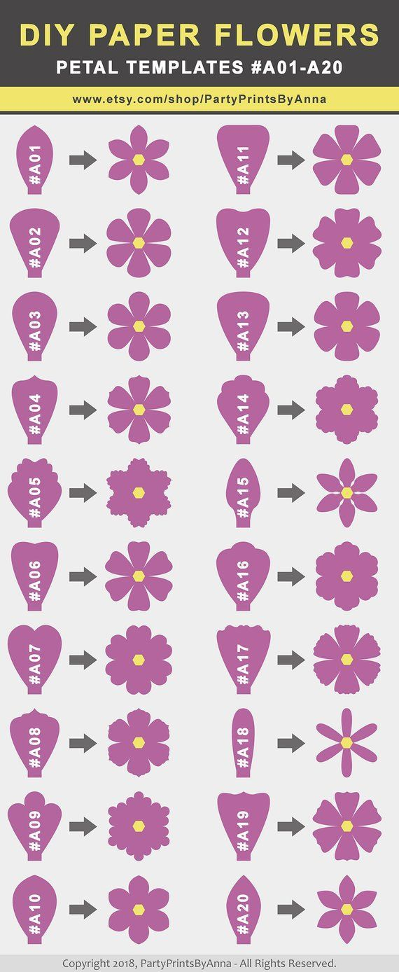 SVG Paper Flower TEMPLATES, SET of 50 Petals, 4 Bases, 6 Centers, and 4 Leaves | giant paper flower templates, molde de flores de papel