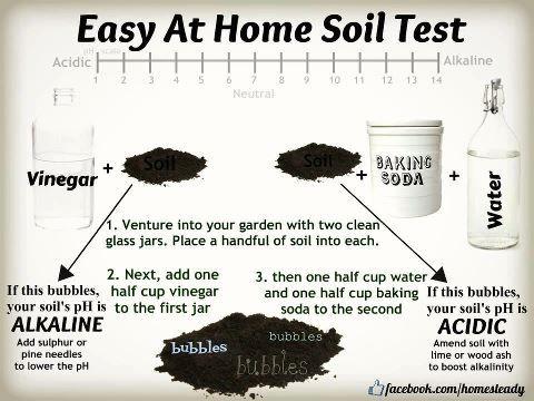 Easy at home soil test