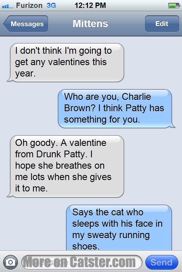 texts from mittens the valentines day edition catster - Valentines Text Messages