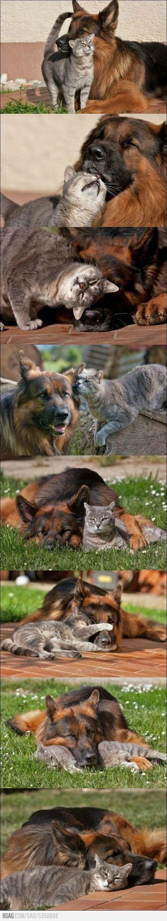 Good friends.