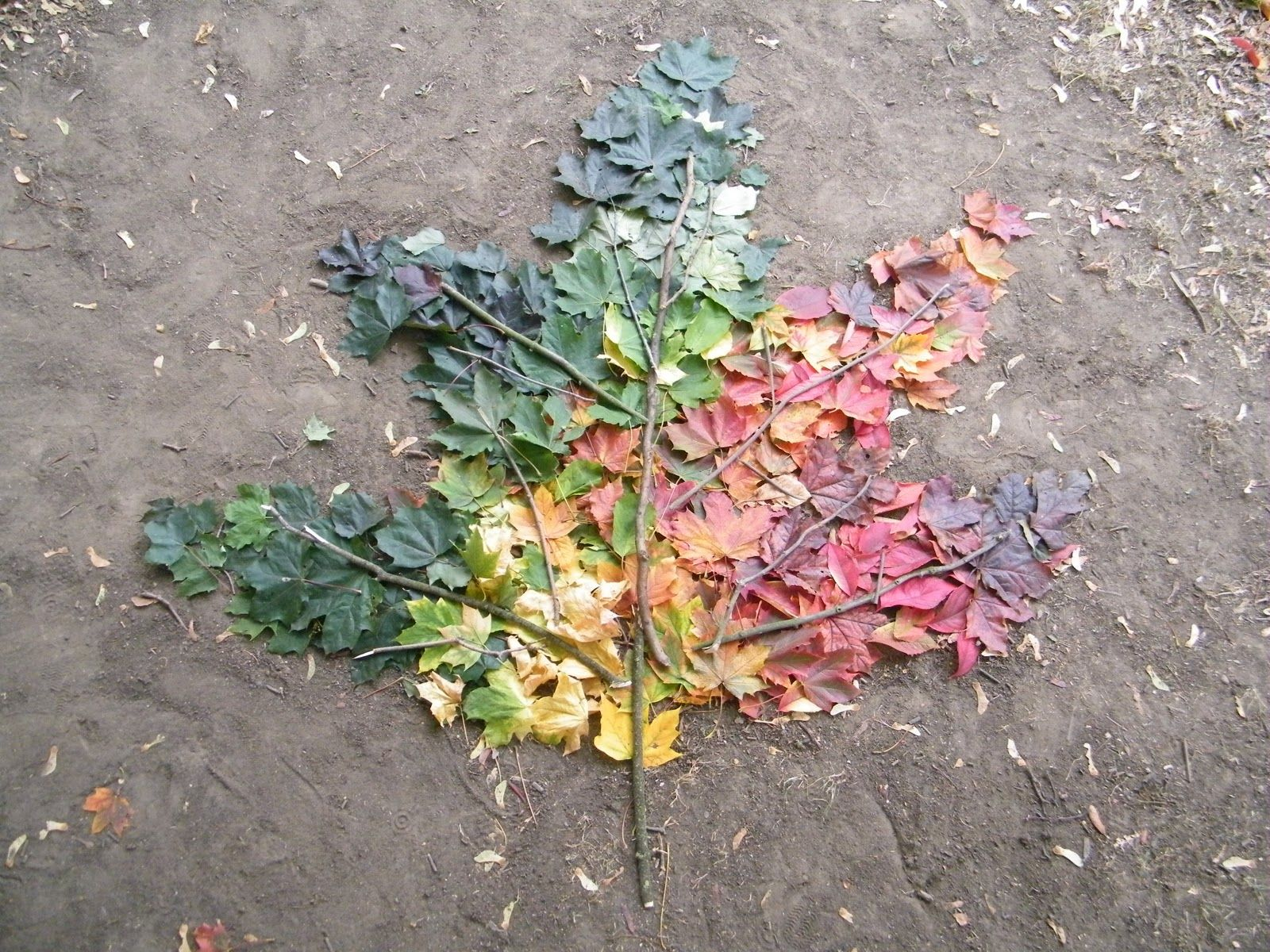 Andy Goldsworthy Inspired Lesson