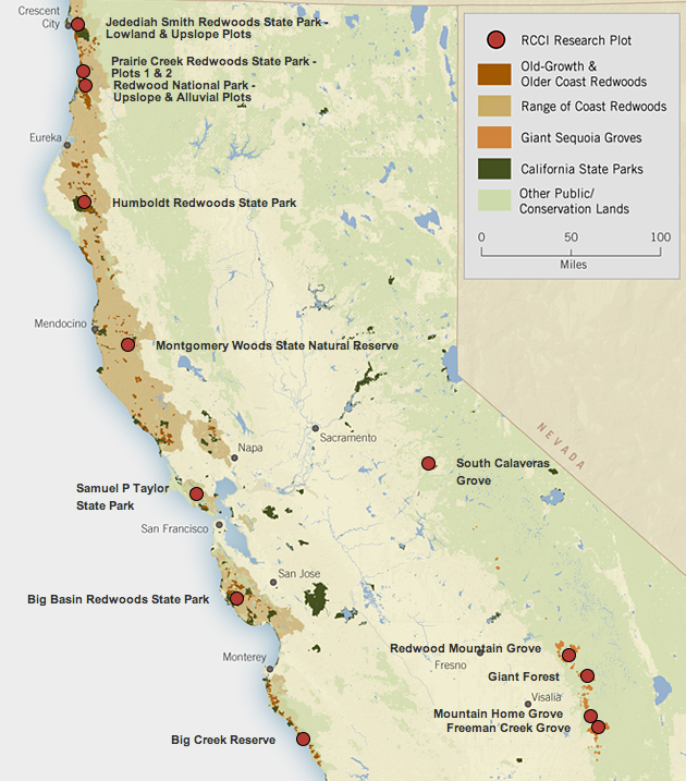Redwood Forest California Map A great interactive map put out by 'Save the Redwoods League' that