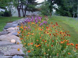 Perennial Garden Designs Zone 5 | ... perennial garden design modern on garden designs zone 7, garden designs zone 6, garden designs zone 3,