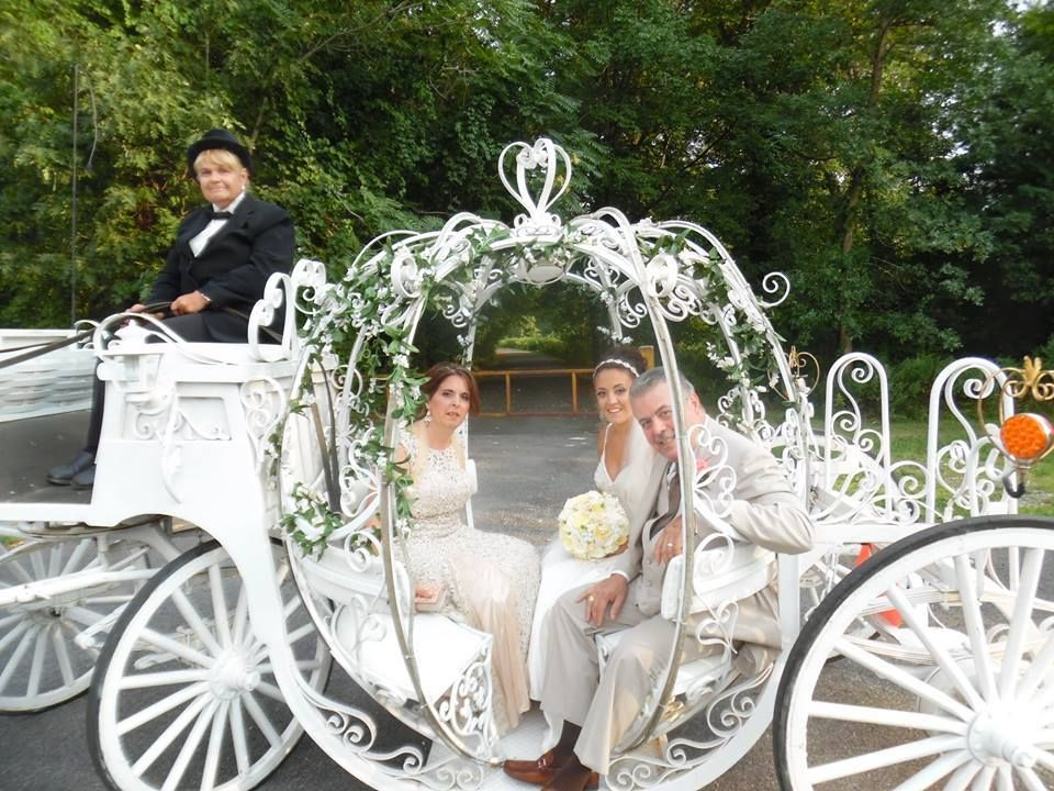 Cinderella Pumpkin Horse Drawn Carriage With White Seats Pulled By 1