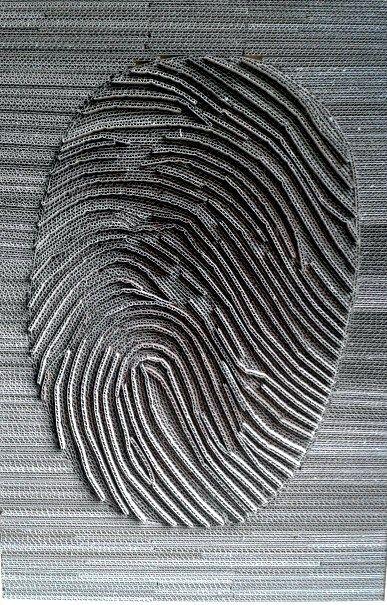 linie-papilarne-z-kartonu-1