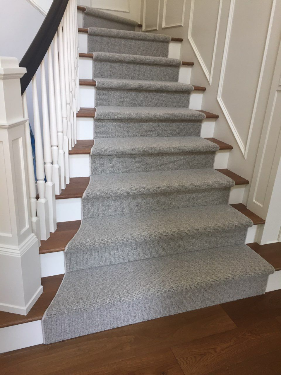 Does Your Home Need Pet Protect Carpet Carpet How To Clean