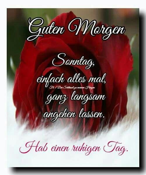 Pin Von Corry Kruys Auf Goedenmorgen Guten Morgen Sonntag