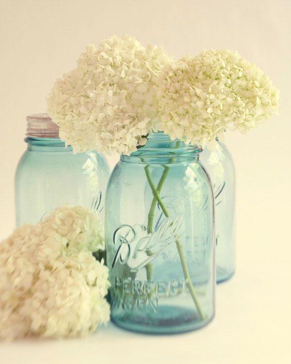 Mason Jar Wall Decor Pinterest : Soft dreamy hydrangea photograph home decor warm vintage