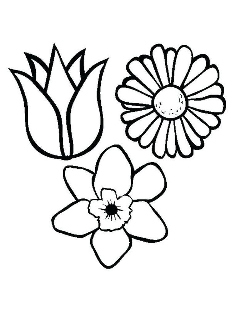 Flower Arrangement Flower Coloring Sheets Coloring Pages