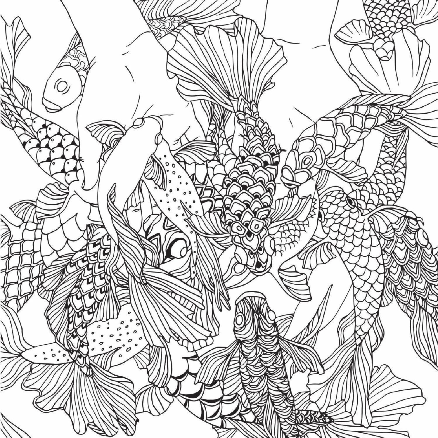 Metamorfish. Tras los arrecifes / mtm editores