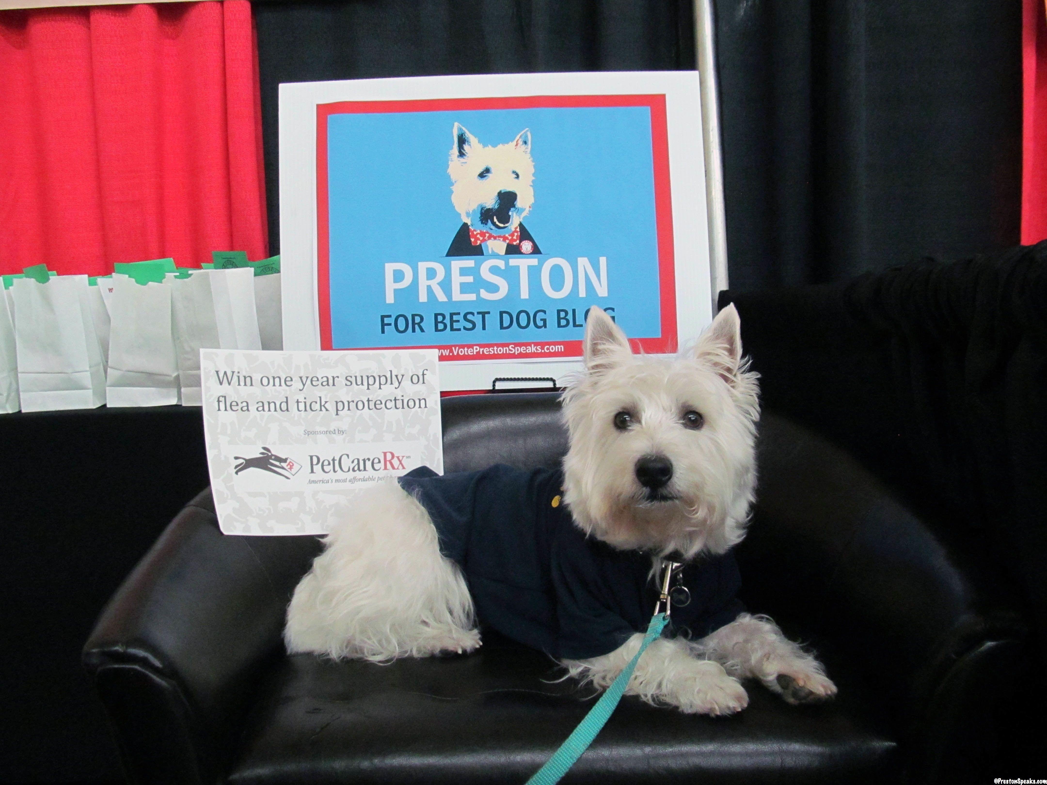 2013 Nashville Pet Expo @Diane Pet Expos  Coverage of the 2012-2014 Amazing Pet Expos from their Online Ambassador - Preston from PrestonSpeaks.com.  #dog #westie #westhighlandwhiteterrier #amazingpetexpo