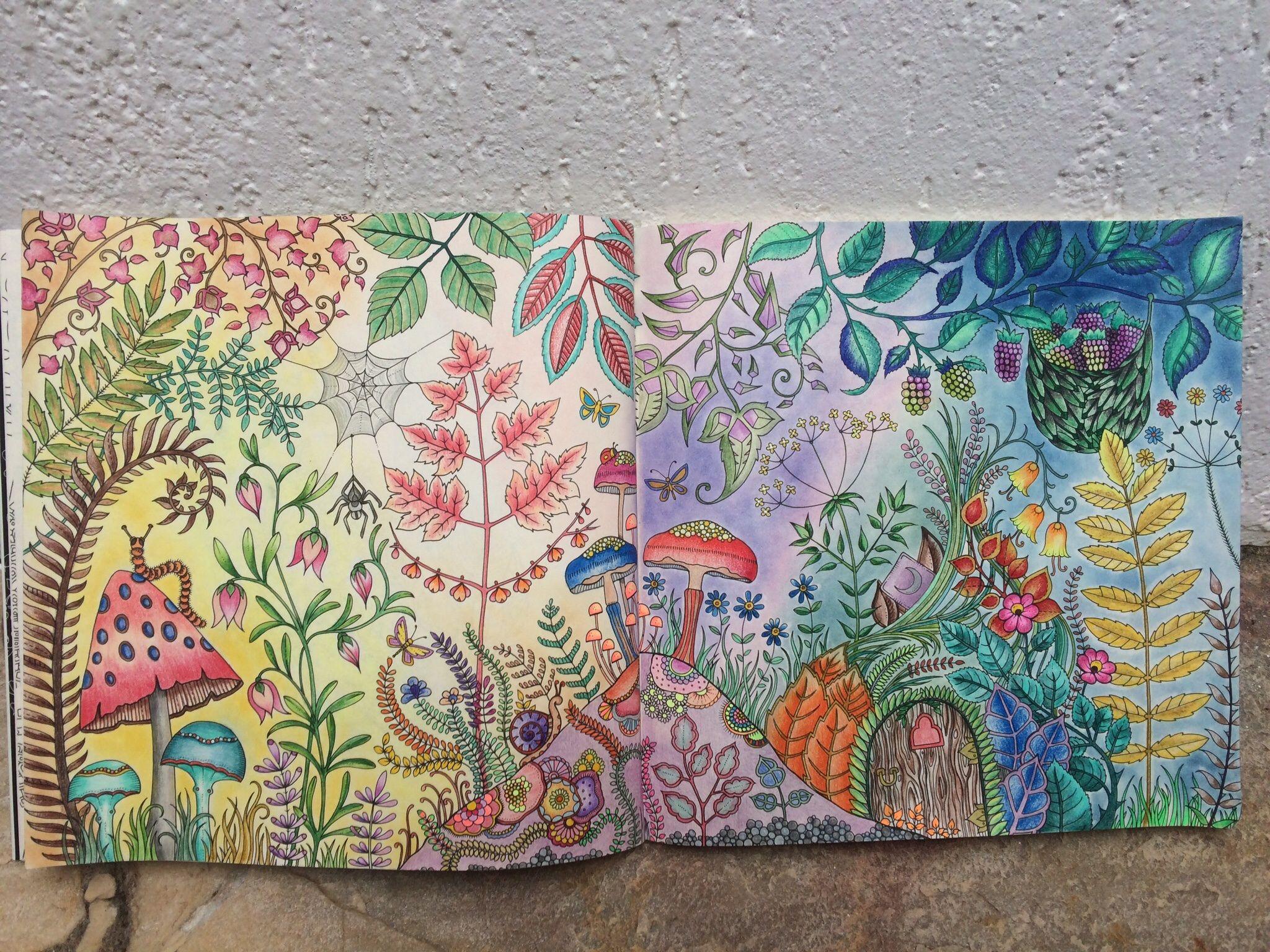 Floresta Florestaencantada Enchantedforest Coloringbook Livrodecolorir Colorir