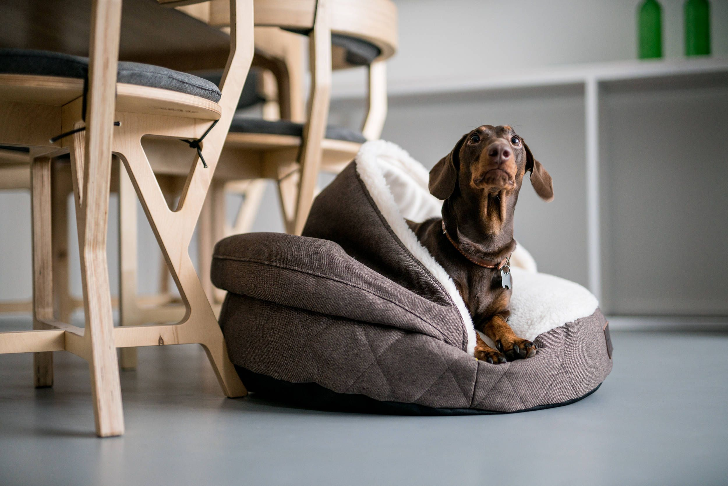 most advanced dog the cave cream available removable elegant cover snuggle fabric patent bed base kona in small designer protected with herringbone products